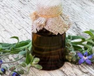 масло бораго-свойства-применение