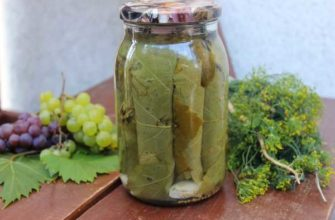 kak-marinovat-vinogradnye-listya-rezepty