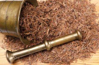 lapacho-chaj-svojstva-i-primenenie